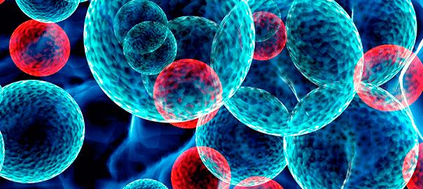 Cómo se obtienen las células madre
