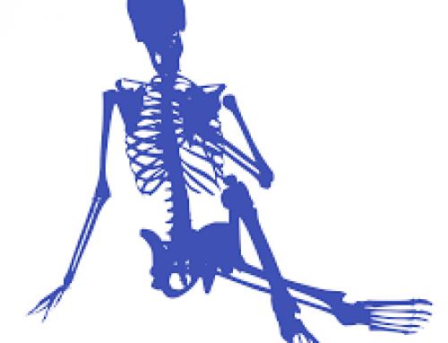 ¿Qué es la osteogénesis?