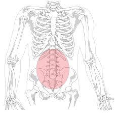 cómo aliviar el dolor de espalda lumbar